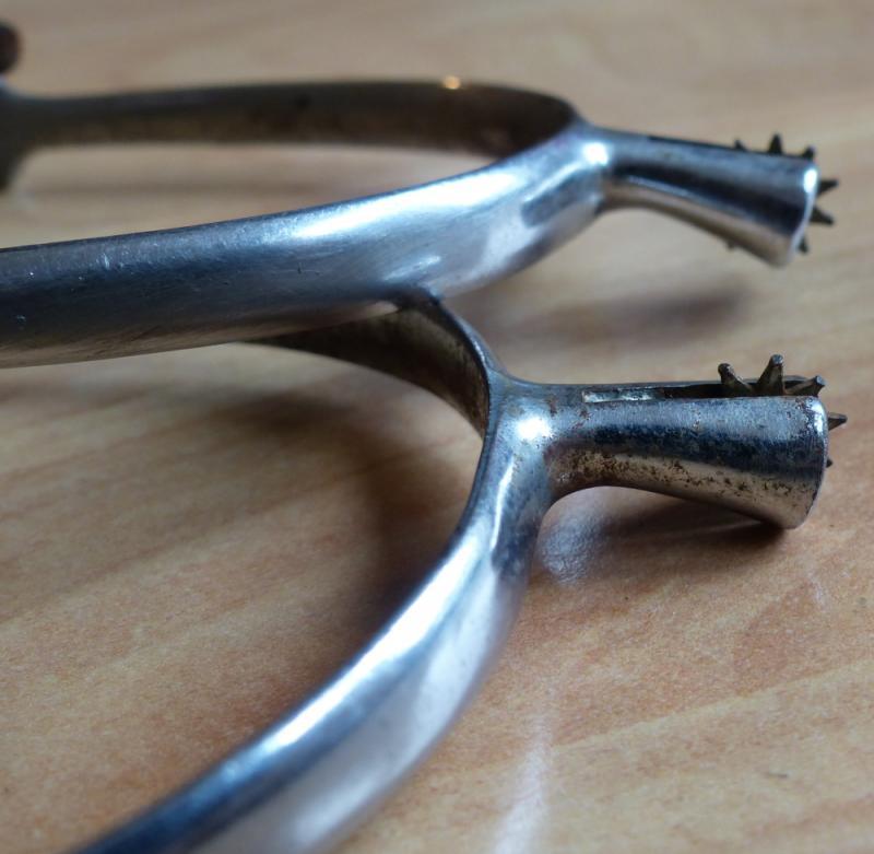 Sonnenrad-Sporen 2,2 cm